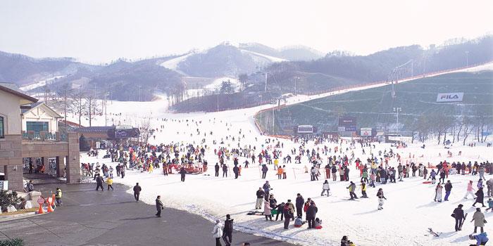 ทัวร์เกาหลี พักสกีรีสอร์ท เอเวอร์แลนด์ กินขาปูยักษ์ โซล 5วัน 3คืน บิน Jin Air